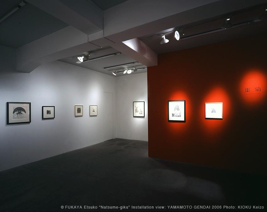 fukaya-2006-natsume-giku